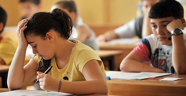 2. Dönem Teog sınavına günler kala velilerimizin yapabilecekleri
